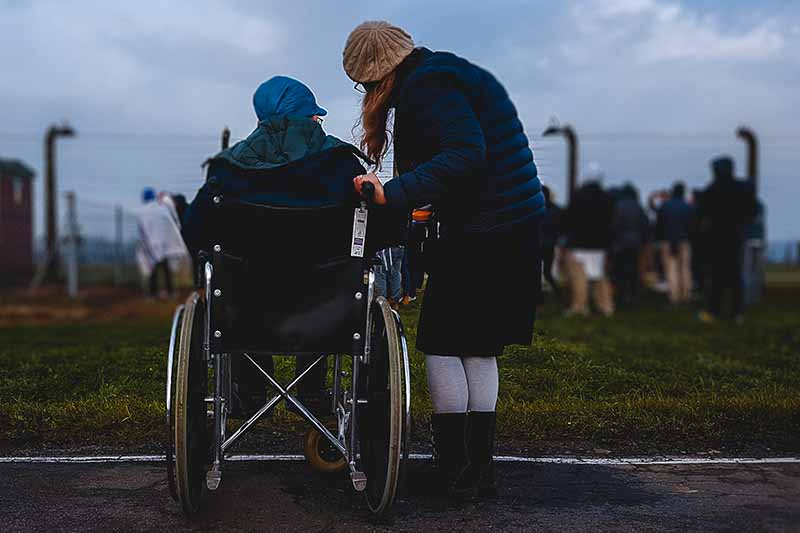 Picture of a carer standing with a person sitting in a wheelchair looking at some cows