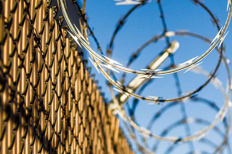 Picture of barbed wire on a prison fence