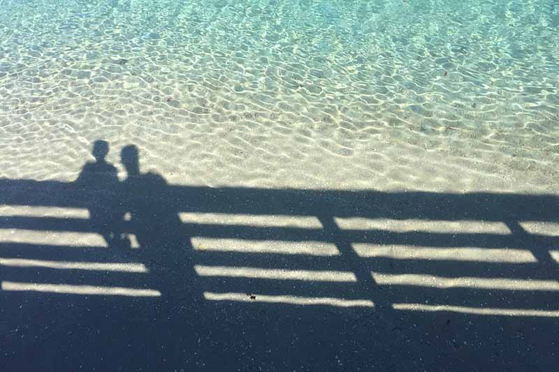 Picture of the shadow of a man and child looing into the water from a pier